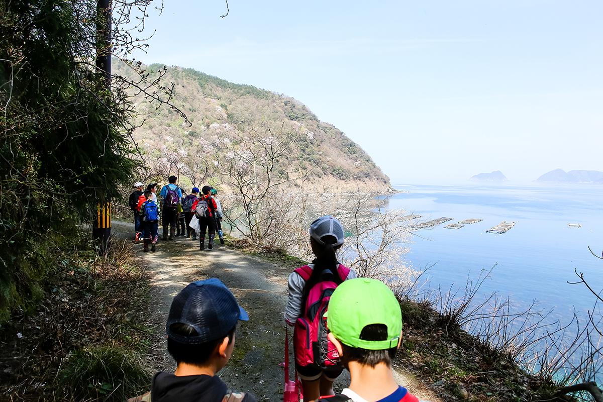 春の若狭路まるごとキャンプ 湖畔散策 桜